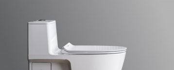 American Standard Toilet WC